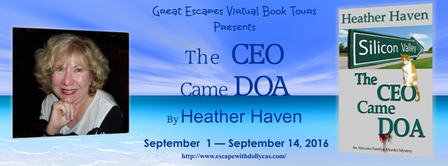 the-ceo-came-doa-large-banner640