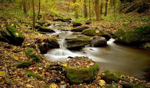 Обои природа, foto, palabra, раздел Природа, размер ...