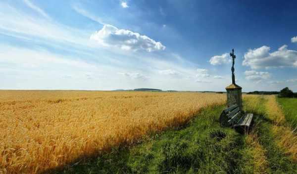 Обои христианские трава поле раздел Природа размер