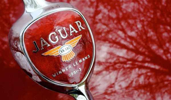 Обои jaguar, car, logo, раздел Машины, размер 1920x1200 HD ...
