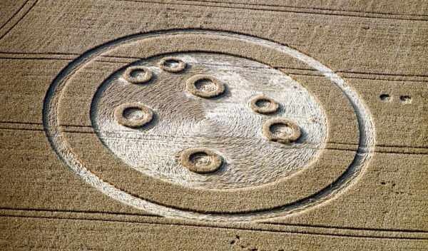 Обои поле, crop, circle, раздел Природа, размер 1600x1200 ...