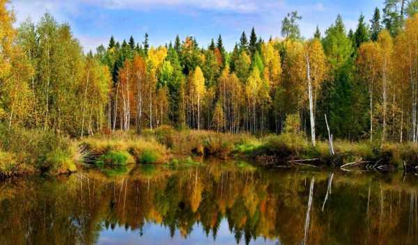 Обои осенние, пейзажи, осень, раздел Природа, размер ...