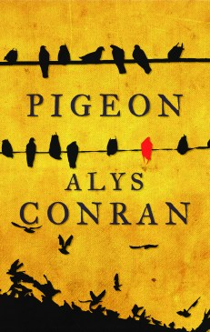 PIGEON by Alys Conran...https://storgy.com/2017/01/29/book-review-pigeon-by-alys-conran/