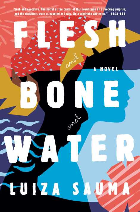 flesh-and-bone-and-water-9781501158025_hr