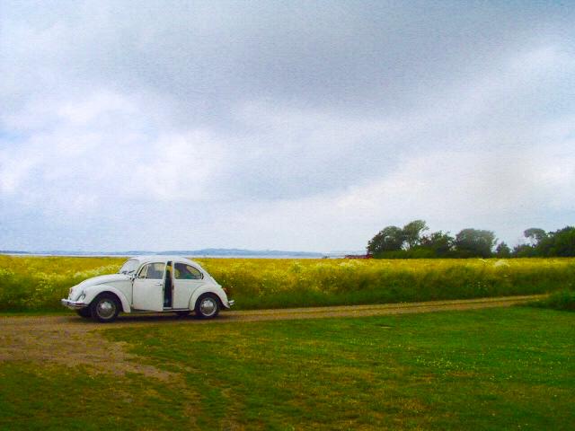 Der VW Käfer