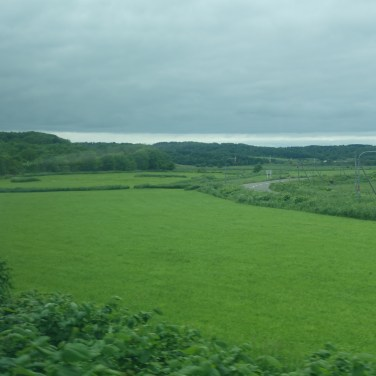 flat green countryside