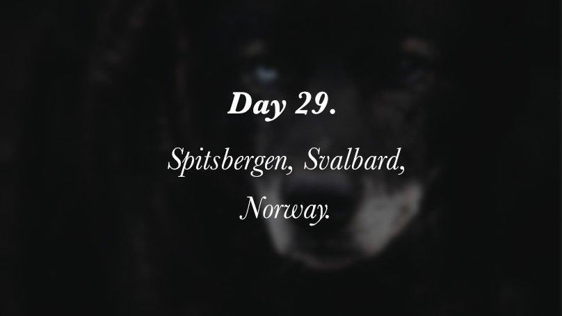 Day 029