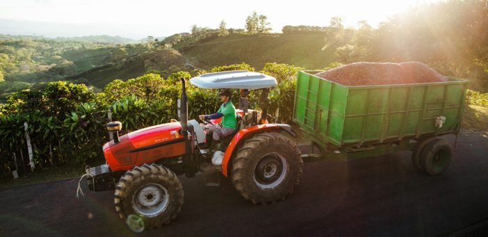 A Starbucks employee driving a small truck with sustainably-grown coffee beans to display the company's CSR initiatives