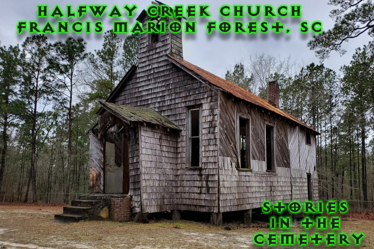 stories in the cemetery halfway creek church francis marion forest
