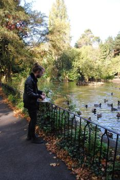 feeding-the-ducks-cole