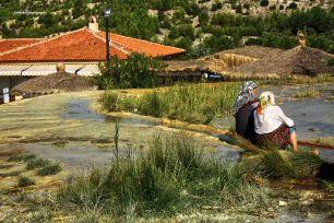 Public Water Spring