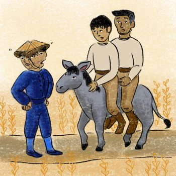 A Donkey To Market