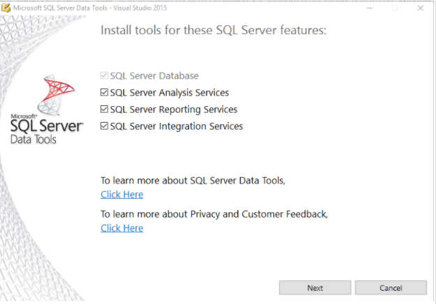SQL Server Feature Selection