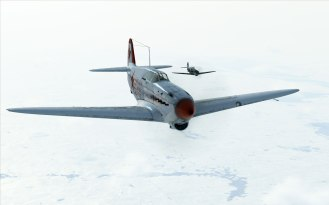 bos-yak1-formation