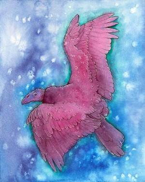 Turkey Vulture Spirit illustration