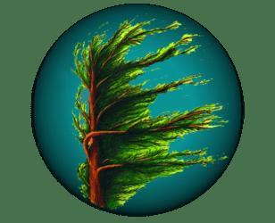 Stormtree Studio