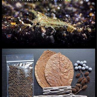 Starter or beginner essentials for health freshwater shrimp.