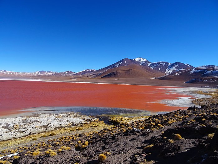 Laguna Colorada red lagoon - Uyuni - Bolivia
