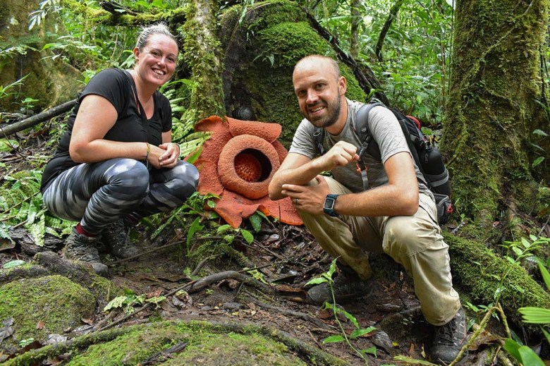 Triumphant: we found the Rafflesia flower