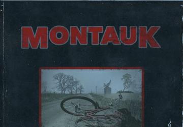 Montauk Stranger Things Bible Cover