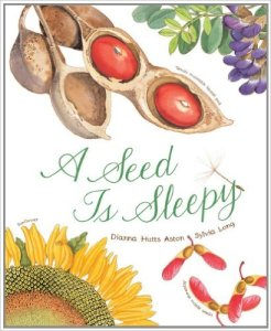 story-farmer-seeds-seed-is-sleepy