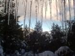 """Jaws of Winter"" ~ Pine Mountain Club, California"