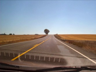 """""""Lonely Road"""" ~ California's Central Valley"""