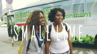 E1: Relationships, Family, Career | Small Lime