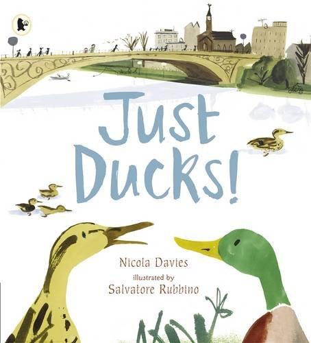 Just Ducks! - Story Snug