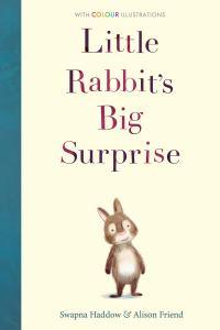 Little Rabbit's Big Surprise - Story Snug