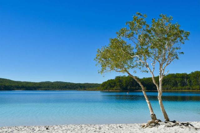 Lake McKenzie, Fraser Island | Where To Rest Your Body And Soul In Queensland, Australia | Australia Travel Guide | StoryV Travel + Lifestyle