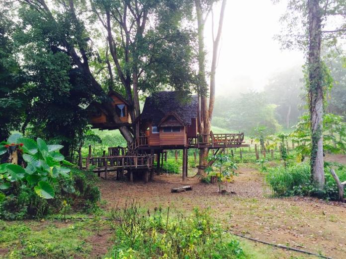 treehouse hotels rabeang