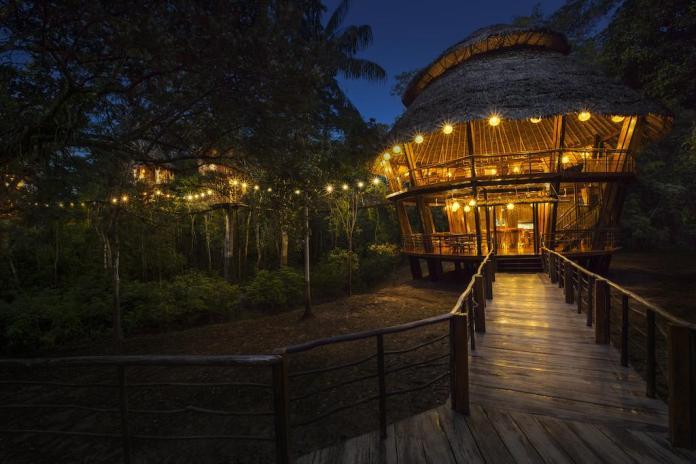 treehouse hotels treehouse lodge