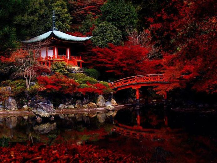 Shades of the World: Red autumn leaves surrounding a temple of the same color