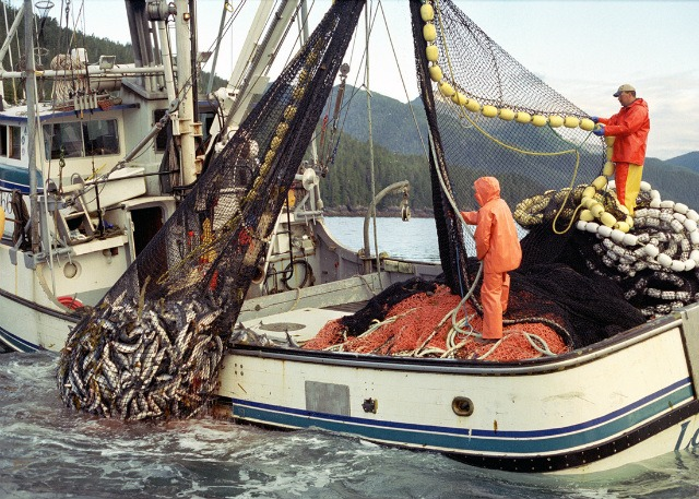 Best travel jobs: Commercial fishing