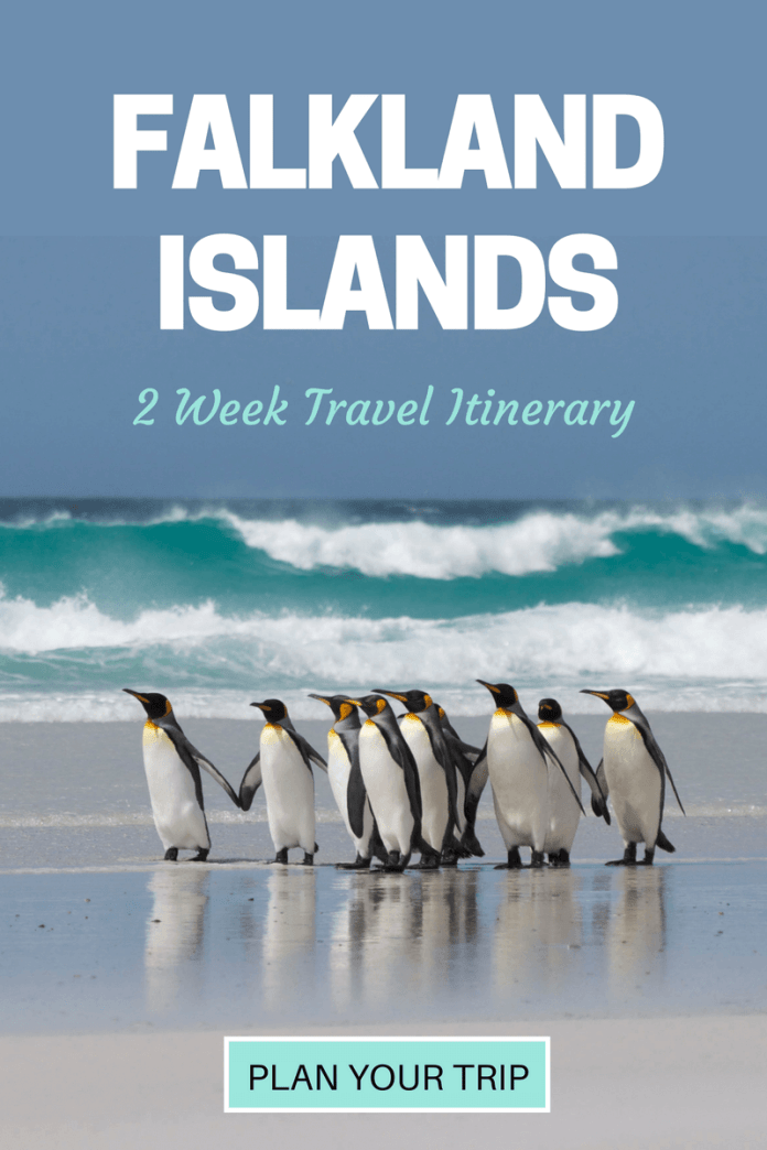 With over 700 islands in the archipelago, it's not easy deciding how to spend your time in the Falklands. With a mix of wildlife, walking, history and adventure - this 2-week itinerary is designed to make the most of what the Falkland Islands have to offer.