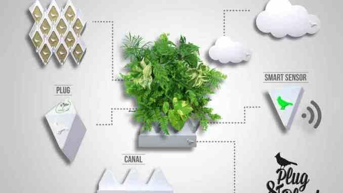 вертикальное садоводство
