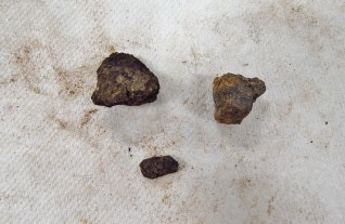 The pieces of coal found in the first bag of artifacts from SU 1211.