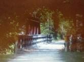Red Cedar Trail