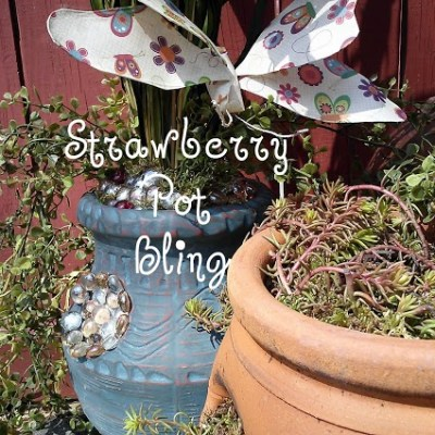Strawberry Pot Bling at the Inspiration Cafe