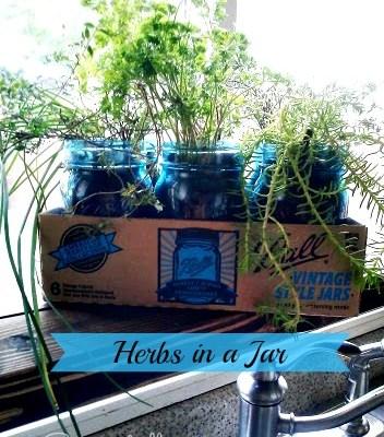 Herbs in a Vintage Blue Ball Jar (Kitchen Update 4)