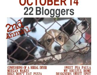 Thrift-Benefit-Sheltered-Animals-2nd-annual