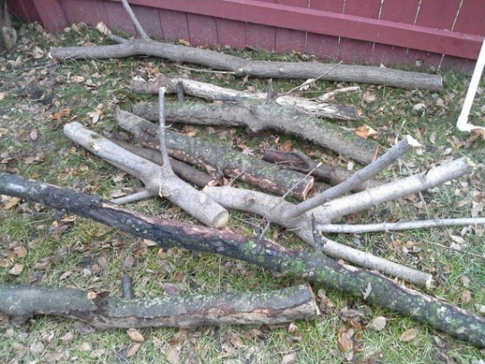 logs-branches