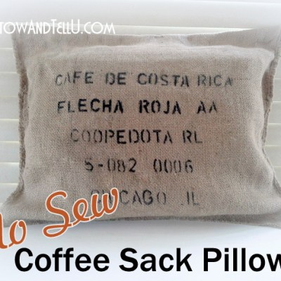 No Sew Coffee Sack Pillow with Speed-Sew {Giveaway}