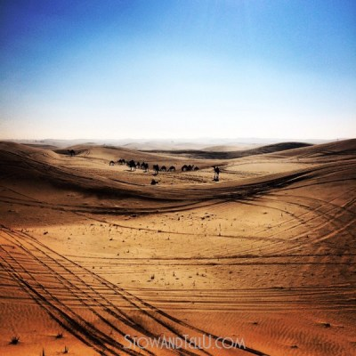 Postcards from the Arabian Desert