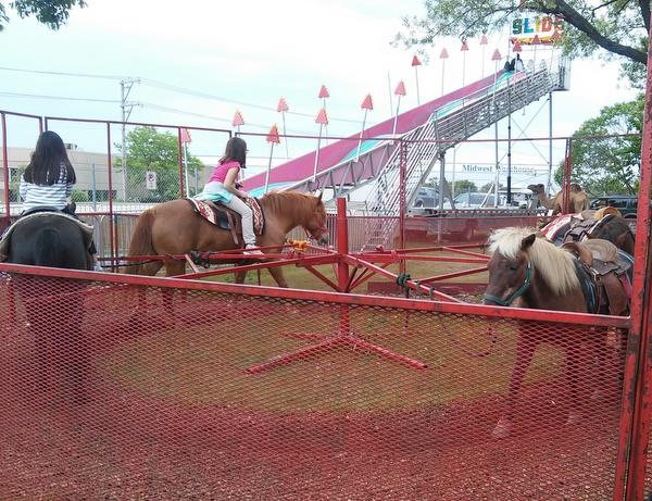 pony-rides-montana-charlies
