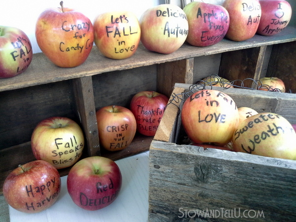 apples-with-edible-fall-sayings-http://stowandtellu.com