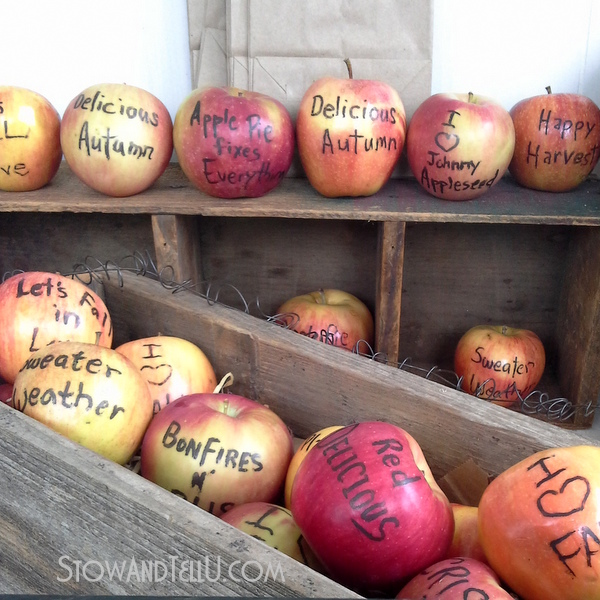 edible-fall-quotes-apples-http://stowandtellu.com