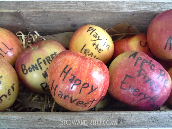 fall-inspiration-written-apples-http://stowandtellu.com