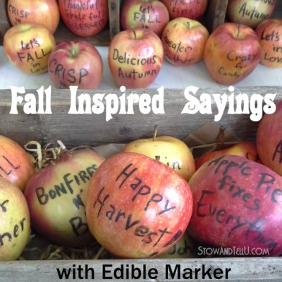 Fall Inspired Sayings with Edible Marker on Apples